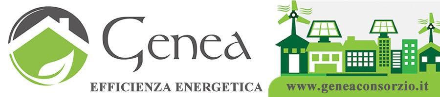 Genea Main Sponsor